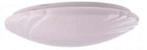 Cyllene Oyster Pattern